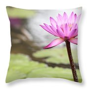 Pond With Pink Water Lily Flower Throw Pillow