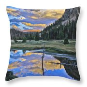 Pondering Reflections Throw Pillow