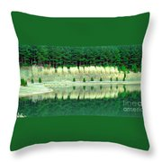 Ponderings Throw Pillow