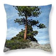 Ponderosa Pine And Granite Boulders Throw Pillow
