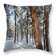 Ponderosa Winter Throw Pillow