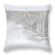 Pondside Thaw Throw Pillow