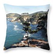 Pont Lobos Cove Throw Pillow