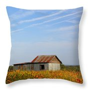 Pontotoc Shed 2am-110573 Throw Pillow