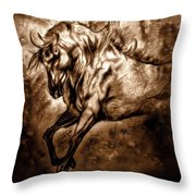 Pony Express Throw Pillow