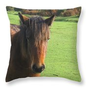 Pony On The Moors Throw Pillow