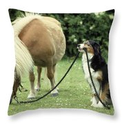 Pony With Lead Rope Held By Sitting Dog Throw Pillow