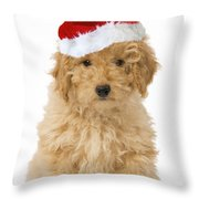 Poodle In Christmas Hat Throw Pillow