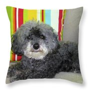 Poodle Love Throw Pillow