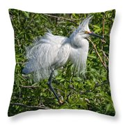 Poofed Throw Pillow