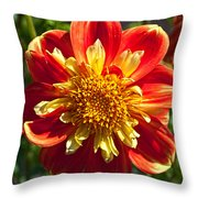 Pooh Dahlia Flower Throw Pillow