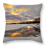 Pool Of Dreams Throw Pillow