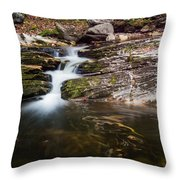 Pooling River Throw Pillow