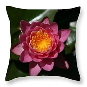 Pools Of Pollen Throw Pillow