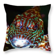 Poopaa Hawaiian Hawk Fish Throw Pillow