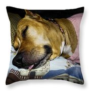 Pooped Pup Throw Pillow