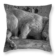 Pooped Puppy Bw Throw Pillow