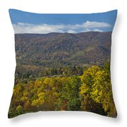Poor Mountain Throw Pillow