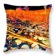 Pop Art B06 Throw Pillow
