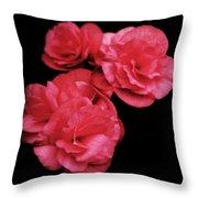 Pop Of Pink Throw Pillow