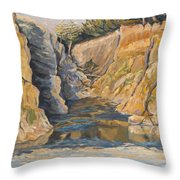 Poplar Cove Throw Pillow