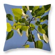 Poplar Leaves Throw Pillow