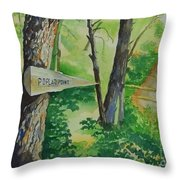 Poplar Point Camp Throw Pillow