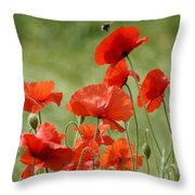 Poppies 1 Throw Pillow
