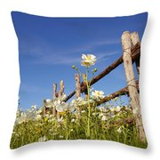 Poppies And Fence 2am-110209 Throw Pillow