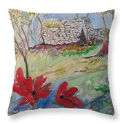 Poppies And Ruins Throw Pillow