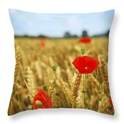 Poppies In Grain Field Throw Pillow