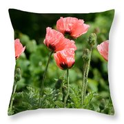 Poppies In My Garden Throw Pillow