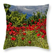 Poppies In Remembrance Throw Pillow