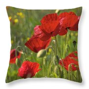 Poppies In Yorkshire Throw Pillow