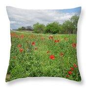 Poppies Near Hondo Throw Pillow