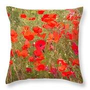 Poppies Vii Throw Pillow