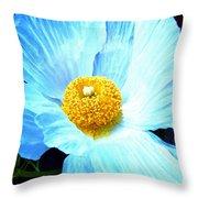 Poppy 8 Throw Pillow