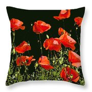 Poppy Art Throw Pillow