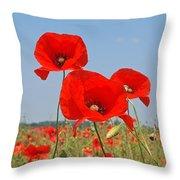Poppy Fields 4 Throw Pillow