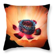 Poppy In The Darkness Throw Pillow