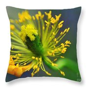 Poppy Seed Capsule 2 Throw Pillow by Kaye Menner