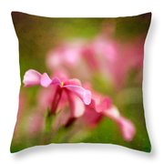 Popsicle Pink Throw Pillow