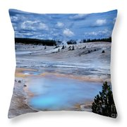Porcelin Basin Throw Pillow