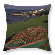 Port Ballintrea Throw Pillow