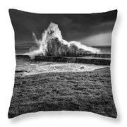 Port Charlotte Wave Throw Pillow