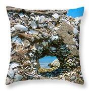 Port Hole Window Throw Pillow