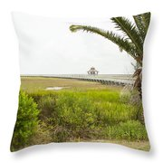 Port Lavaca Migratory Bird Stopover Throw Pillow