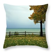 Port Sanilac Lookout, Michigan Throw Pillow