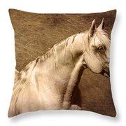 Portait Of A Stallion Throw Pillow