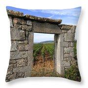 Portal Of Vineyard In Burgundy Near Beaune. Cote D'or. France. Europe Throw Pillow by Bernard Jaubert